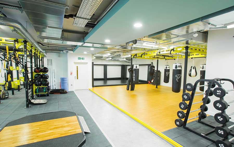 Gymnasium Acoustics and Noise Treatments